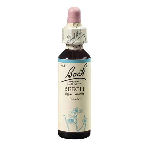 Beech 20 ml-big